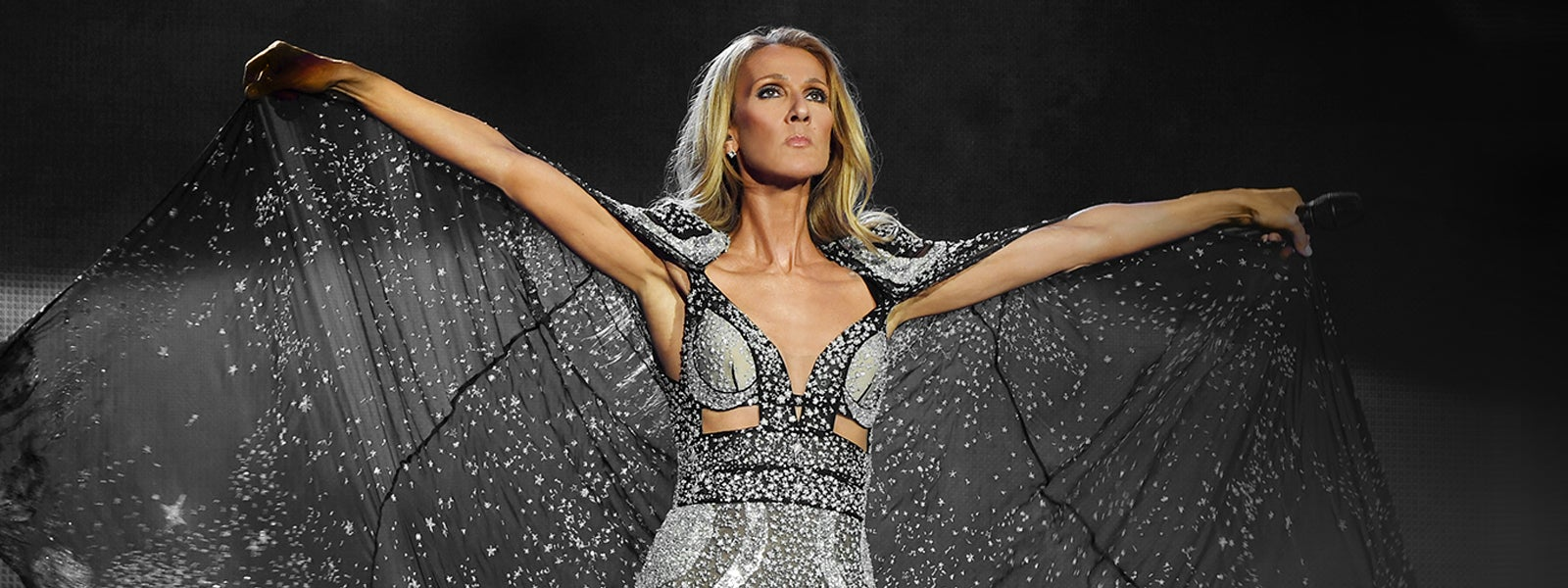 More Info for Celine Dion: Courage World Tour